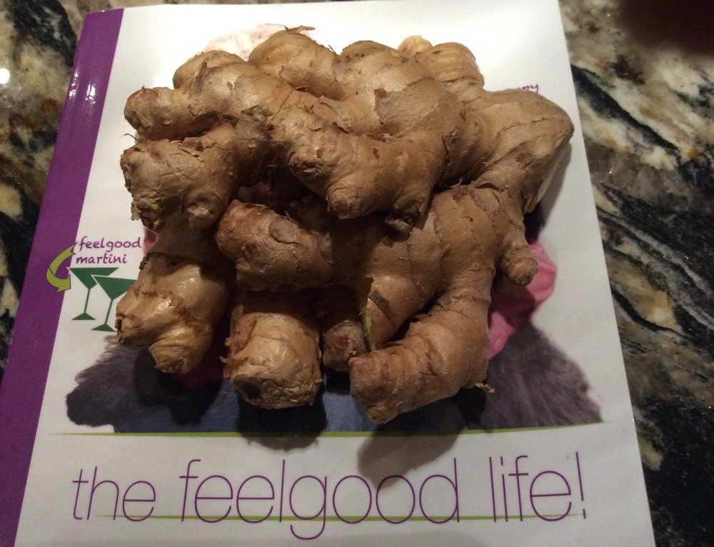 #thefeelgoodlife with Ginger